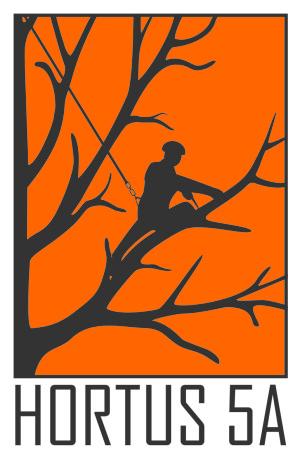 Hortus5a - profesionālas rūpes par kokiem